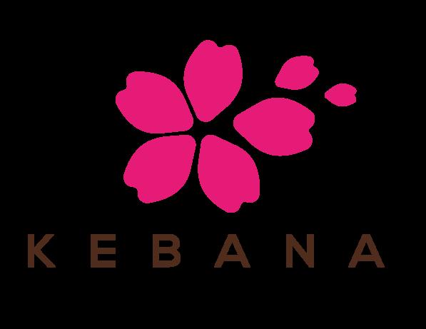 Fraccionamiento Kebana
