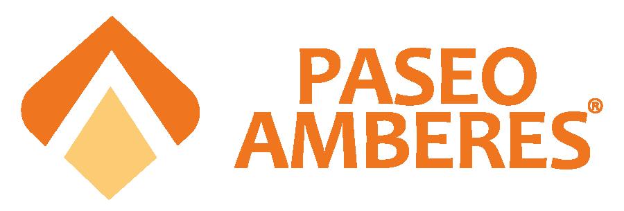 Fraccionamiento Paseo Amberes