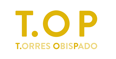 Fraccionamiento Torres Obispado