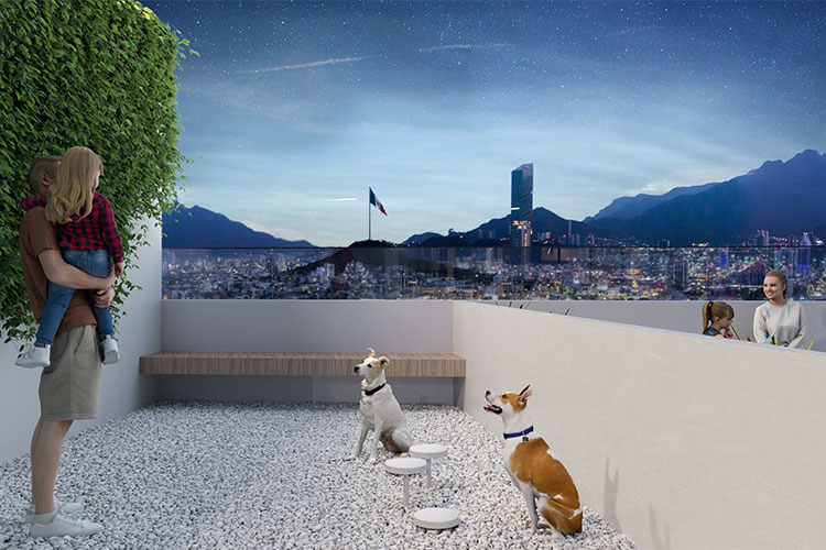 Pet zone torre F1RST
